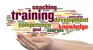 ciel blog - invest on training and education