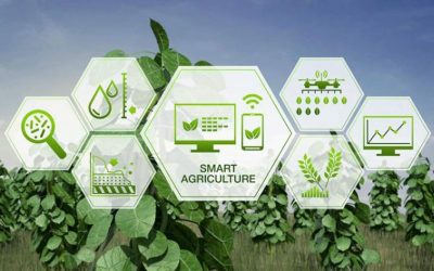#Building Tomorrow: Future of Work in Agri sector